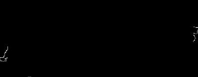 Xtenders Logo